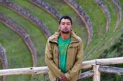 Rolniczy tarasy w Świętej dolinie Turysta z mureny tłem w Cusco, Święta dolina, Peru obraz stock
