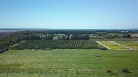 Rolniczy teren w Cypr, widok z lotu ptaka na polach z soczystą trawą i drzewami zbiory
