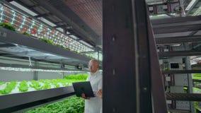 Rolniczy in?yniery Pracuje w plantaci Pełny długość portret cztery nowożytnego naukowa studiuje wybór zbiory