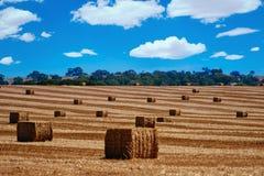 Rolniczy zaorany pole krajobrazu wiejskiego Zdjęcia Royalty Free