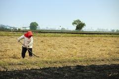 rolnik fotografia stock