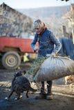 Rolnik bawić się z psem Fotografia Stock
