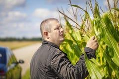Rolnik blisko kukurydzanego pola Obraz Stock