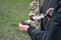 Rolnik i agronom analizujemy rozwój pszeniczne rozsady obraz stock