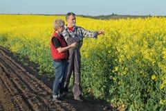 Rolnik i agronom w kwitnąć rapeseed pole Zdjęcia Stock