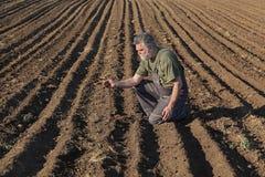 Rolnik lub agronom sprawdza kultywującego pole obrazy royalty free