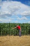 Rolnik lub agronom sprawdzamy kukurydzanego pole używać pastylkę Obrazy Royalty Free