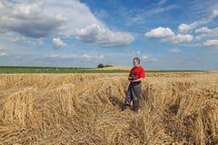 Rolnik lub agronom sprawdzamy uszkadzającego pszenicznego pole Zdjęcie Stock