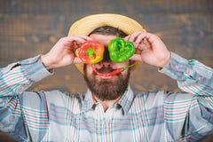 Rolnik ma zabawy drewnianego tło Mężczyzna chwyta pieprzu żniwo jako śmieszny grymas Chili i słodki pieprz jako uśmiech i oczy zdjęcia stock