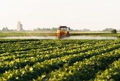 Rolnik na ciągniku z natryskownicą robi użyźniaczowi dla młodego warzywa obraz stock