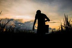 Rolnik podnosi zbiornika obraz royalty free