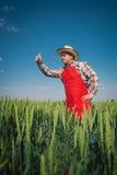 Rolnik w polu obraz royalty free