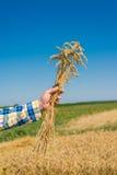Rolnik w polu zdjęcie stock