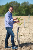 Rolnik w sadzie zdjęcia stock