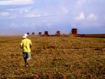 Rolnik w soj zbierać i polu Zdjęcia Royalty Free