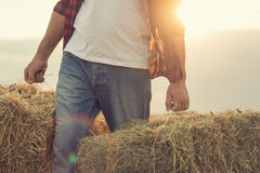 Rolnik z żniwem obrazy stock