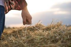 Rolnik z żniwem zdjęcie stock