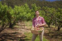 Rolnik z brzoskwiniami obrazy stock