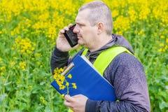 Rolnik z falcówką i telefon komórkowy blisko żółtego gwałta pola Zdjęcia Royalty Free