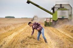 Rolnik z pastylką w polu podczas żniwa obraz royalty free