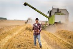 Rolnik z pastylką w polu podczas żniwa zdjęcie royalty free