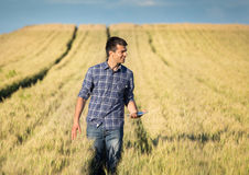 Rolnik z pastylką w pszenicznym polu Zdjęcie Stock