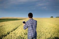 Rolnik z pastylką w zielonym pszenicznym polu Obraz Stock