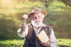 Rolnik z serem zdjęcie royalty free