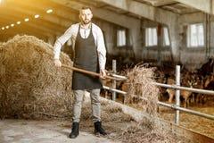 Rolnik z sianem w stajence zdjęcia royalty free