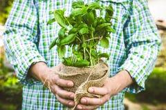 Rolnik z ziele zdjęcie royalty free