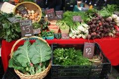 Rolnika rynek, koper/, Okra, pieprze, cebule, rzodkwie Obraz Royalty Free