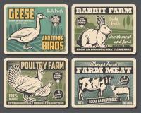 Rolny nabiał, bydło mięsa i ptactwo produkcja royalty ilustracja