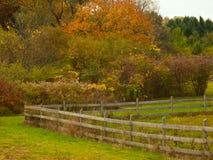 Rolny ogrodzenie Obrazy Royalty Free