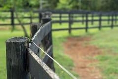 Rolny ogrodzenie Obrazy Stock