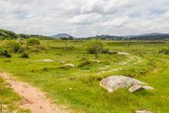 Rolny pole i wzgórze fotografia stock