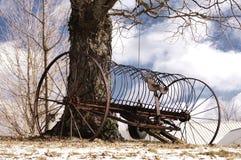 rolny stary świntuch Fotografia Stock