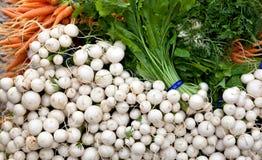 rolny targowy warzywo Obrazy Stock