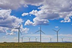 rolny wiatr Obraz Royalty Free