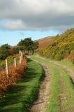 rolnych jesieni toru Zdjęcia Stock