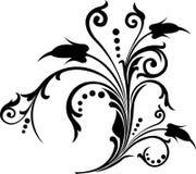 Rolo, cartouche, decoração, vetor Fotos de Stock