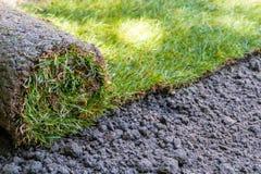 Rolo da grama da grama pronto para instalação imagem de stock royalty free