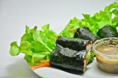 Rolo da salada do legume fresco com alga foto de stock royalty free