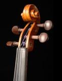 Rolo e pegbox do violino Imagens de Stock