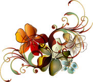 Rolo floral tropical Fotos de Stock Royalty Free