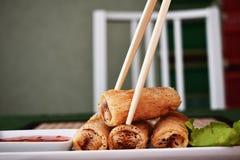 Rolos de mola fritados Imagem de Stock