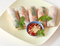 Rolos de mola vegetais Imagens de Stock Royalty Free