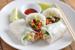 Rolos de mola vietnamianos Imagens de Stock