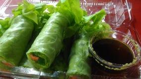 Rolos vietnamianos da salada Imagens de Stock