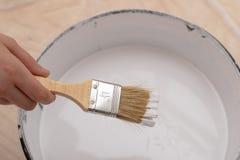 Rolownik i muśnięcie dla malować z farbą Obrazów akcesoria przygotowywający dla malować zdjęcie royalty free