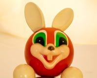 Roly Poly Bunny som ler som lycklig kamrat Arkivfoton